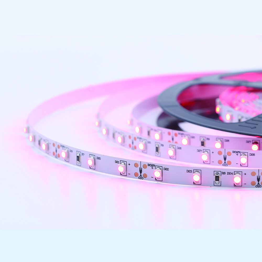 Pink Color 3528smd Led