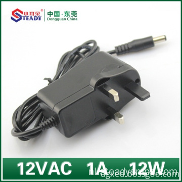 12VDC Plug Type Voeding 1A