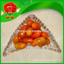 Nutritious gelbe Kirschtomaten Gemüse zum Verkauf