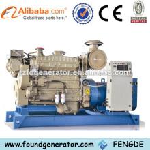 Generador eléctrico del mejor precio 100w de la fabricación de China con CE