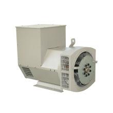 AC Brushless Alternator (JDG Series)