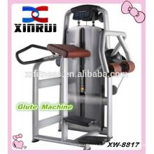 Machine de glute / équipement de forme physique / équipement de gymnase