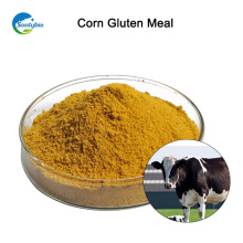 Farine de gluten de maïs d'emballage en vrac à vendre de Suntybio