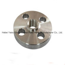 Professional Titanium Thread Flanges