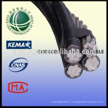 Câble de tête de câble d'alimentation en aluminium de qualité XLI