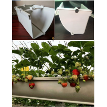 PVC Growing Pipe For Strawberry