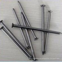 Clavo de hierro común de calidad superior