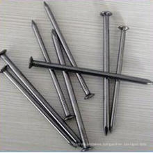 Low Price Top Quality Common Iron Nail
