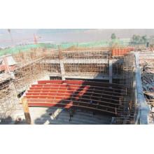 Edifício de Aço / Estrutura de Aço / Quadra de Estádios