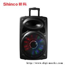 Alta Qualidade Ativo Trolly Speaker com Função Bluetooth