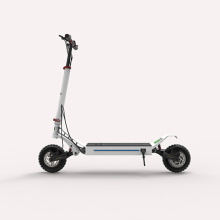 Two Wheel Foldable Adult Electric Scooter