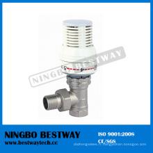 Fournisseur rapide de vanne thermostatique de radiateur en laiton (BW-R01)