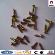Anping Weihao bietet Schraube / verschiedene Typ Blechschraube