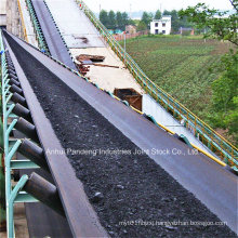 Conveyor Blet/Flame-Resistant Conveyor Belt with PVC Textile Carcass
