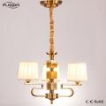 Iluminación de la decoración de la decoración elegante grande y luz de la lámpara para el hogar