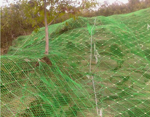 protect wire mesh