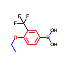 4-ETHOXY-3-(TRIFLUOROMETHYL)BENZENEBORONIC ACID CAS 871329-83-8