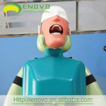 EN-U3 Atacado II Tipo Dental Cabeça Corpo Modelo Exportação Países do Mundo