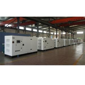 OEM China High quality for Industrial Generator 250kw silent generator 312.5kva cummins supply to Bahamas Wholesale