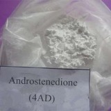 For BodyBuilding Androstenedione Best Sell