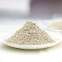 Roasted Garlic Powder Good Quality