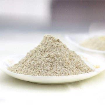 Roasted Garlic Powder Good Quality