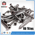 Zinc Plated self tapping screw with high quality