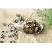 Desidratar o fungo preto vegetal seco