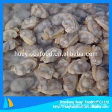 Spezialität gefrorene kurze Halsmuschel verkauft auf der ganzen Welt