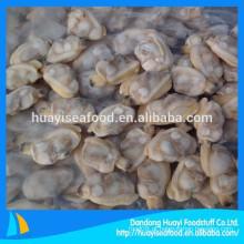 Moluscos de pescoço curto congelados de especialidade vendidos em todo o mundo