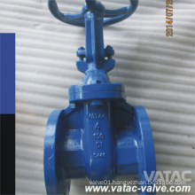 Flanged RF/FF Cast Iron Gate Valve with Non-Rising Stem/Spindle