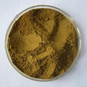 Customized for Plant Extracts Natural Olive Leaf Extract supply to Guinea Manufacturer