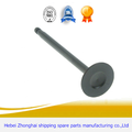 Agricultural Machinery Valve ​for Diesel Engine​