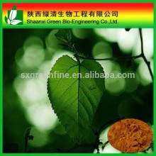 Mulberry Leaf Extract 1-DNJ/Mulberry Leaf Extract Powder