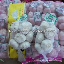 Alho branco puro 500gX20 / preço do saco