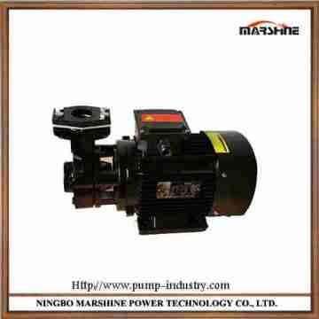 380V Horizontal high temperature circulating oil gear pump