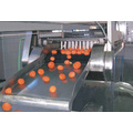 Orange Fruit Can Production Line