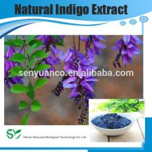 GMP usine fournisseur 5: 1 10: 1 Powder Natural Indigo Extract
