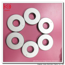 10mm*5mm*2mm Piezoelectric Ceramics Type Pzt Material Piezoelectric Ceramics