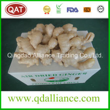 Organic Gap Certified Air Dried Ginger avec Eco Cert