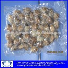 Frozen cooked baby clams in vacuum bag