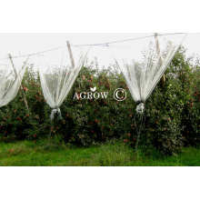 Anti Hail Netting for Orchard and Vineyard