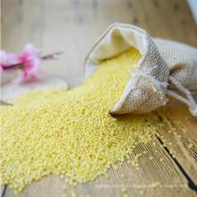 millet collant gluant jaune millet collant millet collant pour le gâteau de riz