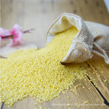 klebriger geschälter gelber Broomcornhirse klebrige Hirse für Reiskuchen
