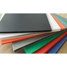 China for Anti-Static Wantong Board PP Antistatic hollow board export to India Manufacturers