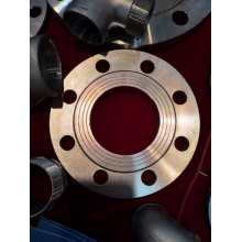 GOST12820-80 FLAG FORGING FLANGE RF CARBON STEEL