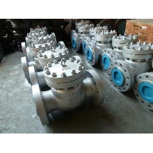 Professional Swing Type Check Valve (XT -H611)
