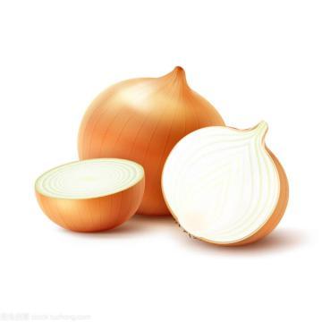 Fresh yellow Onion for Exporter