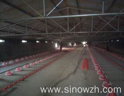 Cowshed steel structure