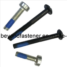 Nyloc Screw Slotted Screw Step Screw Special Bolts